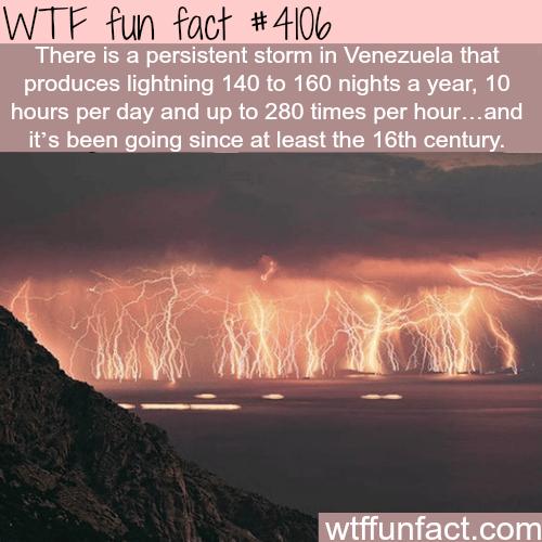Venezuela's everlasting storm - WTF fun facts