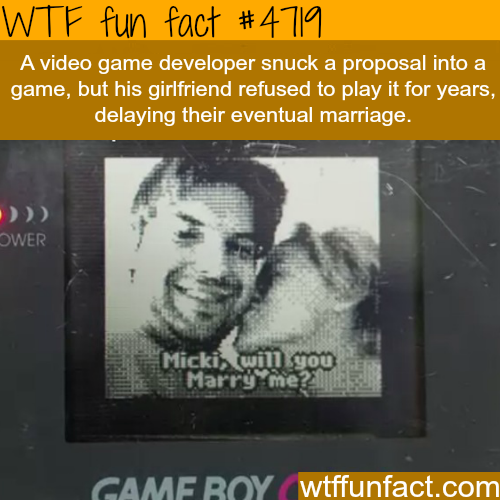 Video game developer hides a proposal into a game - WTF fun facts