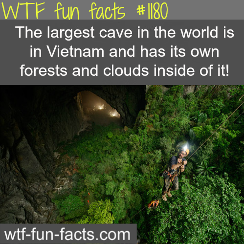 VIETNAM CAVE - largest cave in the world (awesome places)