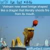 vietnam dragon bridge it breathes fire