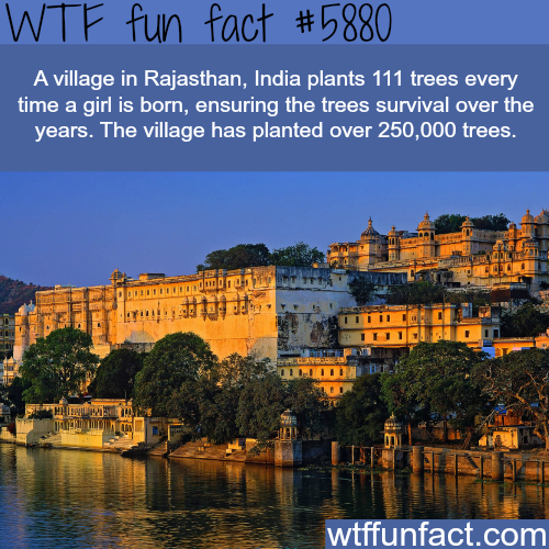Village in India that - WTF fun facts