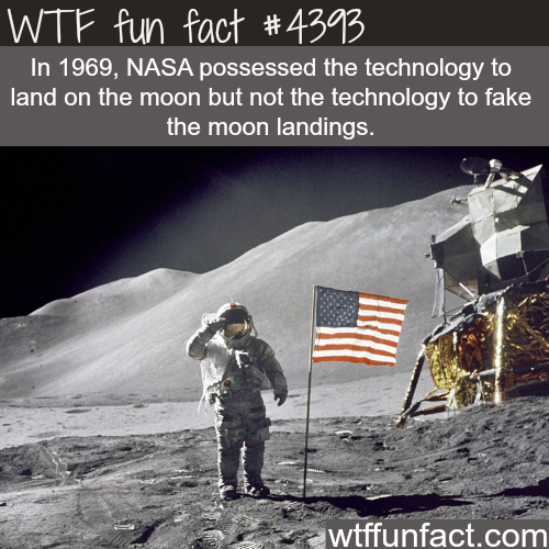 Was the moon landing fake? -   WTF fun facts