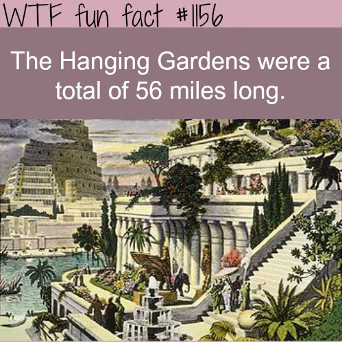 WATCH THIS AWESOME VIDEO ABOUT THE HANGING GARDENS