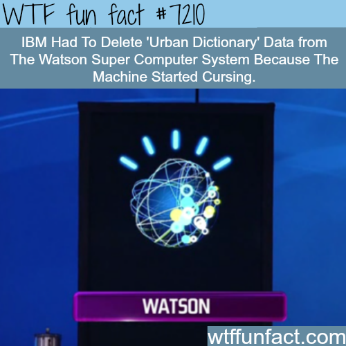 Watson Super Computer learned how to curse - WTF Fun Fact