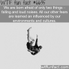 we are born afraid of these two things wtf fun