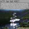 weightless by marconi union wtf fun facts