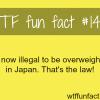 weird laws japan