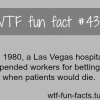 weirdest facts
