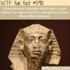 weirdest facts about pharaohs wtf fun facts