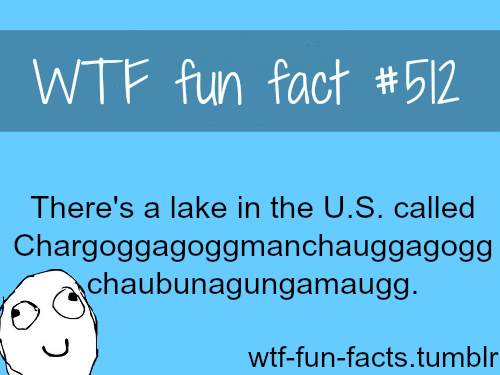 Chargoggagoggmanchauggagoggchaubunagungamaugg if you ever want to check it :)