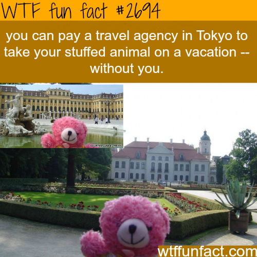 Weirdest things about Japan -WTF funfacts