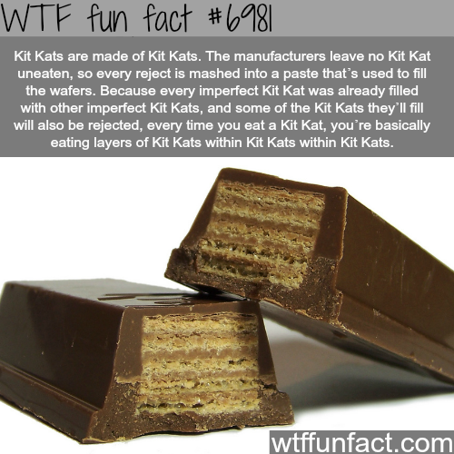 What are Kit Kats made of - WTF fun fact