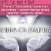 what does abracadabra mean wtf fun fact