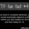 what if you lived in complete darkness