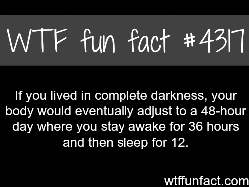 What if you lived in complete darkness -  WTF fun facts