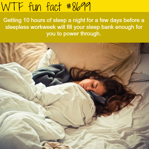What to do before a sleepless workweek - WTF fun facts