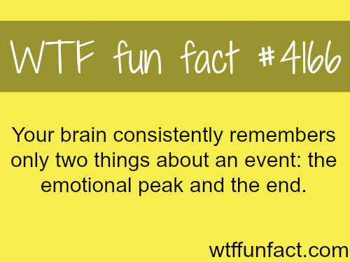What your brain remembers about an event -  WTF fun facts