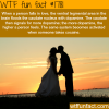 when falling in love facts