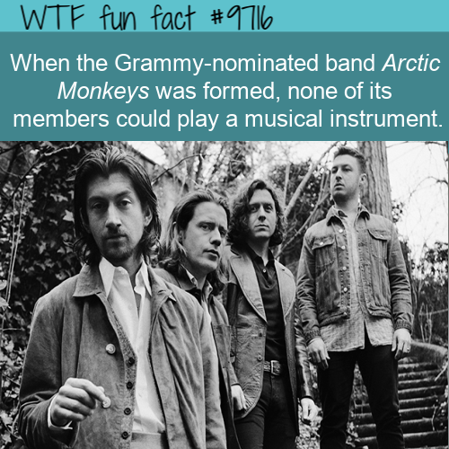 When the Grammy-nominated band Arctic Monkeys was formed