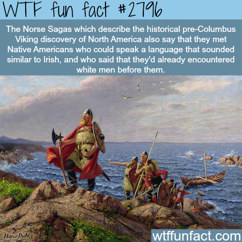 Who discovered America first -WTF fun facts