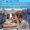 why airplane food tastes bad facts
