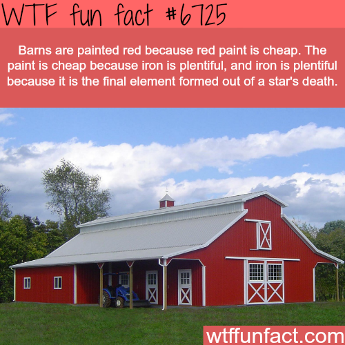 Why barns are painted red - WTF fun fact