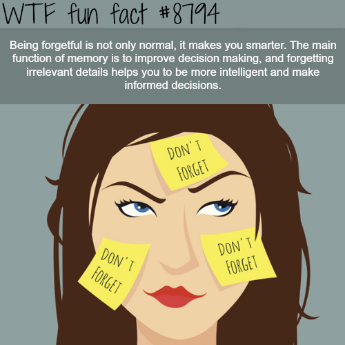 Why being forgetful can be a good thing - WTF fun facts