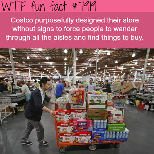 Why Costco doesn't have signs in their stores - WTF fun facts