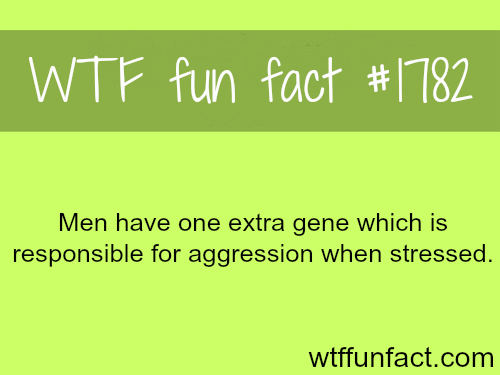 Why do men become aggressive when they are stressed? -WTF fun facts
