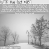 why it gets quiet when it snows wtf fun facts