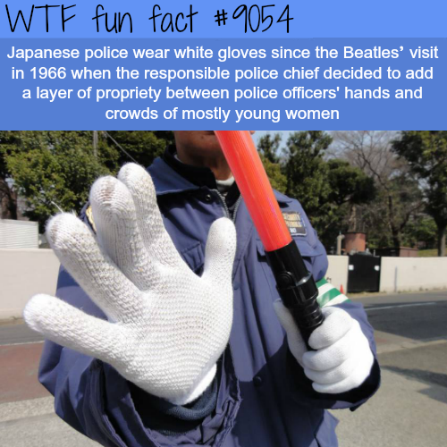 Why Japanese Police Wear White Gloves - WTF fun facts