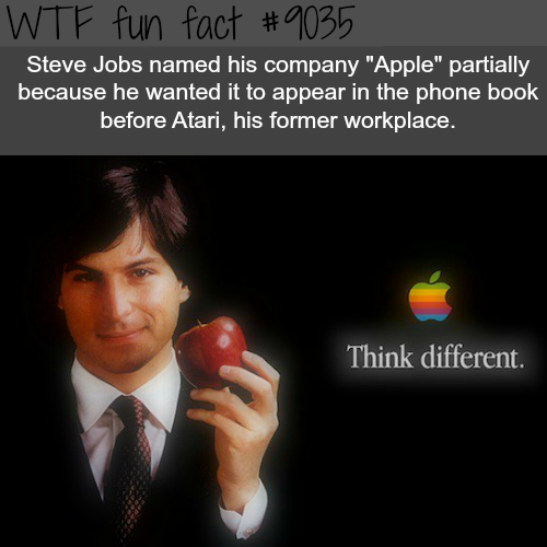 Why Jobs chose the name Apple for his company - WTF fun facts