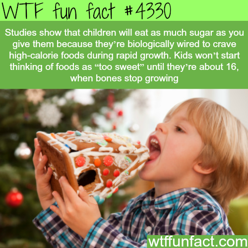 Why kids like sweets -  WTF fun facts