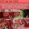 why kit kats are so popular in japan wtf fun