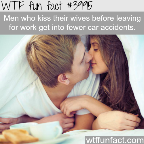 Why men should kiss their wives before leaving to work - WTF fun facts
