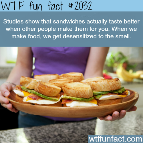 Why most people don't like the food the make -WTF fun facts