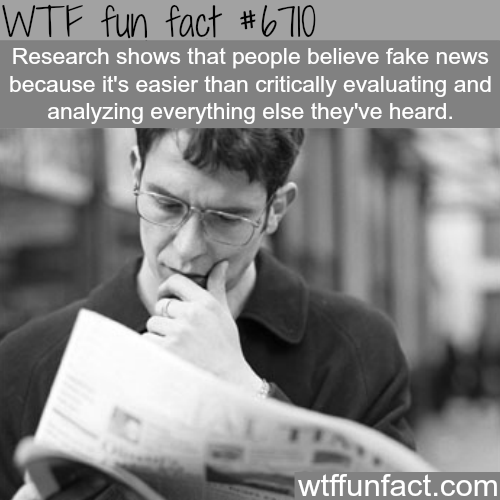 Why people believe fake news - WTF fun fact