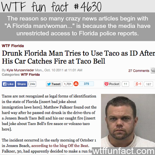 Why people Florida are so crazy - WTF fun facts