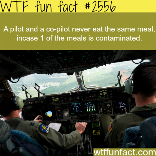 Why pilot and a co-pilot never eat the same meal -WTF funfacts