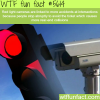 why red light cameras should be removed wtf fun