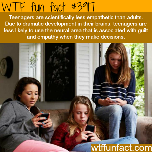 Why teenagers are mean and less empathetic - WTF fun facts