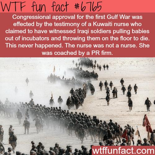 Why war is bullshit - WTF fun fact