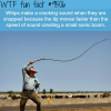 why whips make a cracking sound wtf fun fact