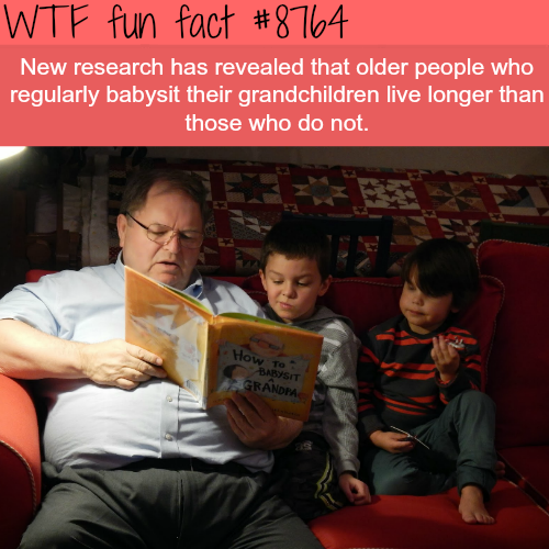 Why you should babysit your grandchildren - WTF fun facts