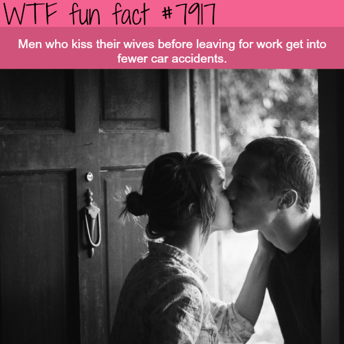 Why you should kiss your wife before going to work - WTF fun facts