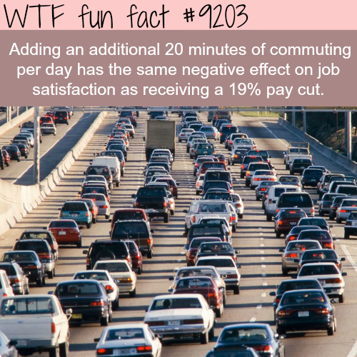 Why you should live close by your work - WTF Fun Fact