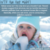 why you should not eat snow wtf fun fact