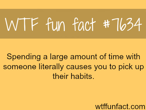 Why you should spend your time with the right people - WTF fun facts