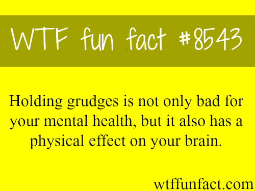 Why you shouldn't hold grudges