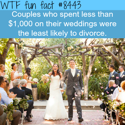 Why you shouldn't spend a lot of money on your wedding - WTF fun facts